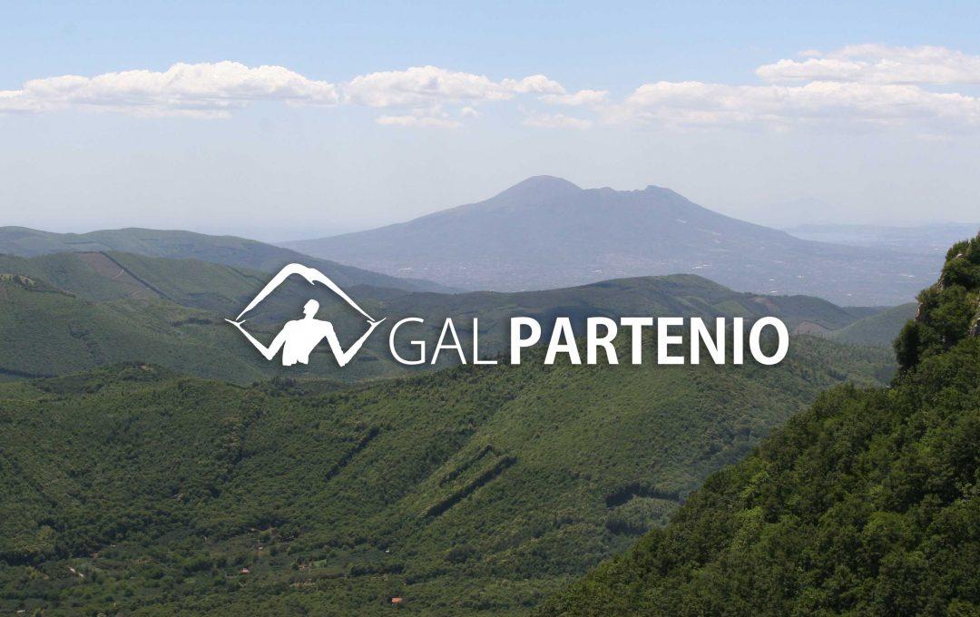 PSR 2014/20 GAL PARTENIO CONSORZIO TI. 16.1.1 AZIONE 2